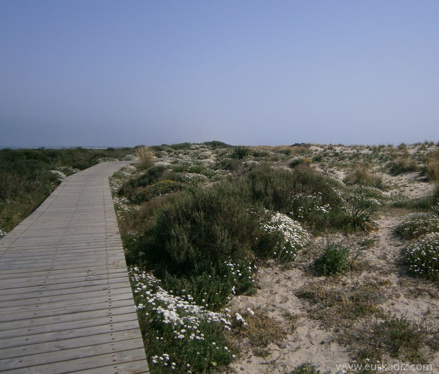 Travesía por el litoral gaditano (I). Camposoto, la punta del boquerón y la batería de Urrutia.