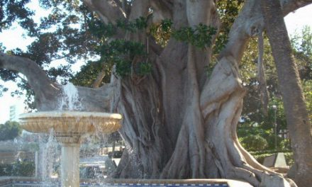 La Alameda Apodaca: el jardín de Cádiz que cuelga al mar.
