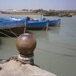 Proyección del documental Costas del Sur: la almadraba gaditana