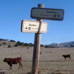 Una excursión a la Sierra: los Llanos del Republicano.