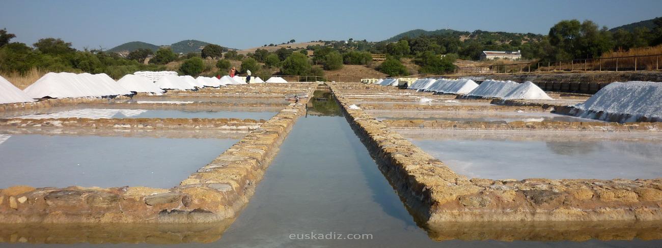 prado-del-rey-euskadiz
