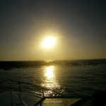salmedina-euskadiz