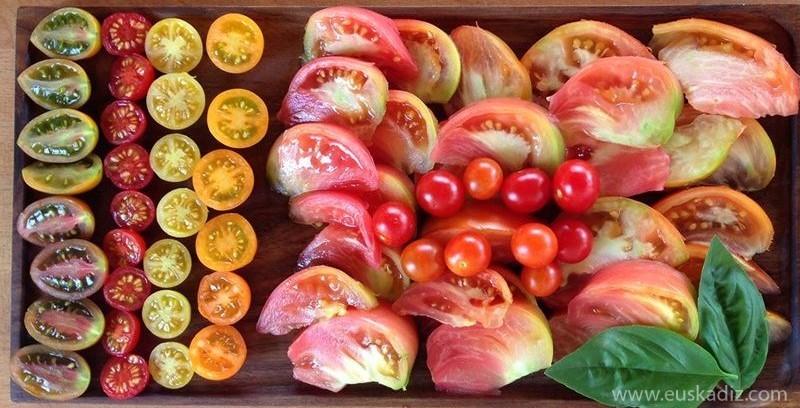 ¡Aquí hay tomate! Del «tomate del país» al «tomate del terreno».