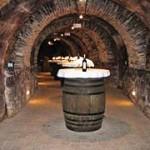 Bodega en Laguardia. Rioja Alavesa